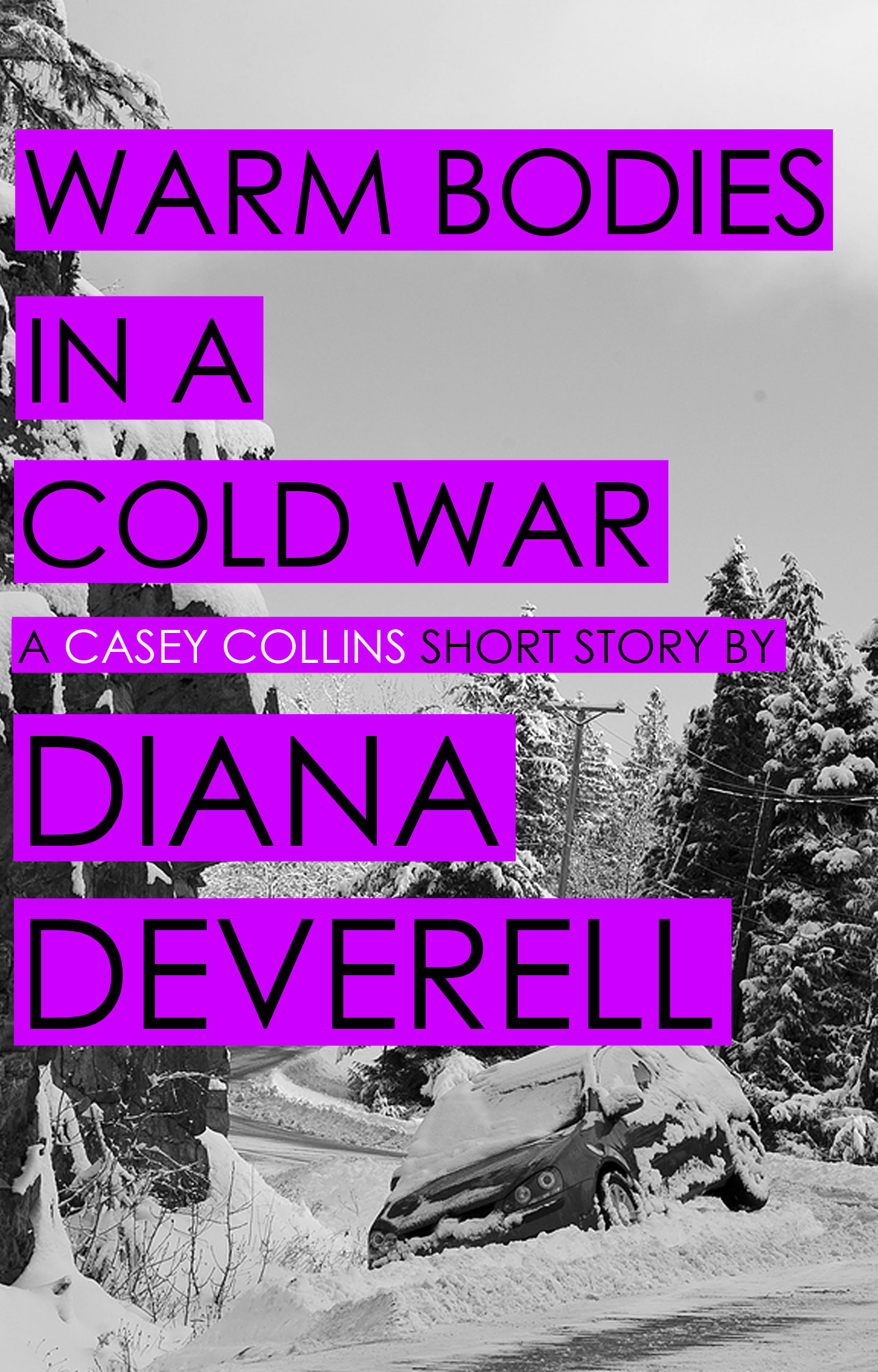 Warm Bodies in a Cold War - A Casey Collins Counterterrorism Thriller by Diana Deverell Book Cover